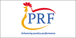 Poultry Research Foundation